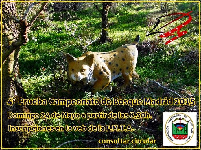 Un ejemplo de cartel anunciado liga madrileña